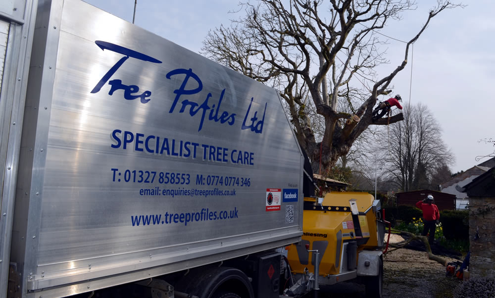 Tree Surgeons - Image of the Tree Profiles Ltd truck